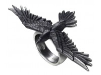 Rings Gothic Plus Gothic Clothing, Jewelry, Goth Shoes & Boots & Home Decor
