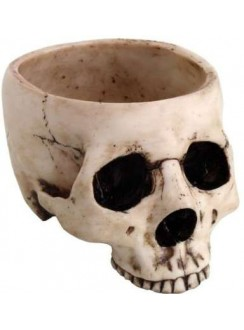 Skull Bowl in Resin Gothic Plus Gothic Clothing, Jewelry, Goth Shoes & Boots & Home Decor