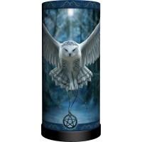 Awaken Your Magic Owl Lamp
