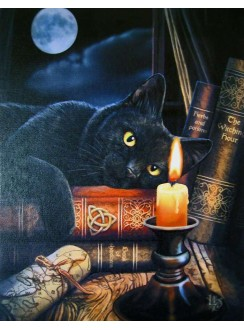 Witching Hour Black Cat Canvas Print Gothic Plus Gothic Clothing, Jewelry, Goth Shoes & Boots & Home Decor
