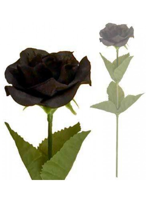 Single Black Rose at Gothic Plus, Gothic Clothing, Jewelry, Goth Shoes & Boots & Home Decor