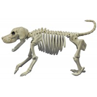 Beagle Bonez Dog Skeleton Prop