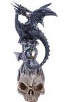Black Dragon on Skull Fantasy Art Statue