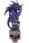 Purple Dragon on Skull Fantasy Art Statue