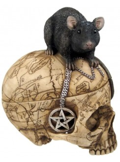 Salem Witch Skull and Mouse Box Gothic Plus Gothic Clothing, Jewelry, Goth Shoes & Boots & Home Decor
