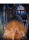 Bewitched Black Cat Canvas Print