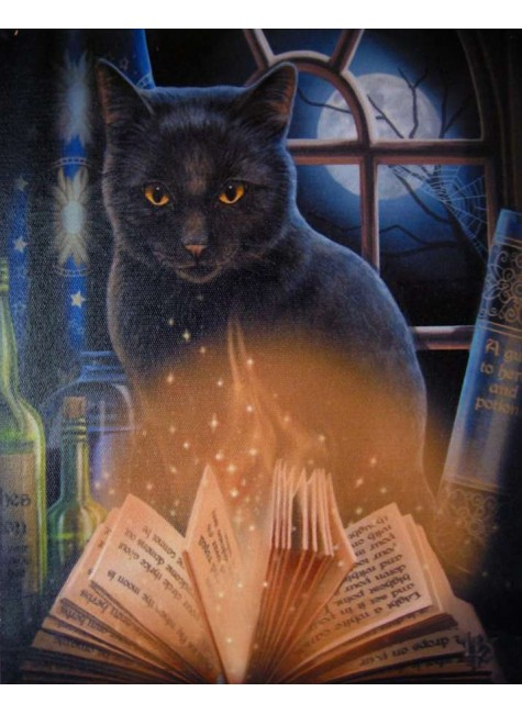 Bewitched Black Cat Canvas Print at Gothic Plus, Gothic Clothing, Jewelry, Goth Shoes & Boots & Home Decor